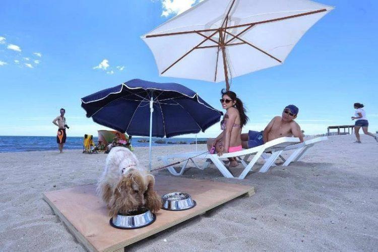 Playa Agua Amarga en Alacant