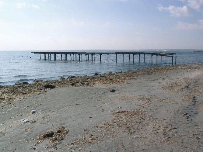 Playa Brac del Port en Santa Pola