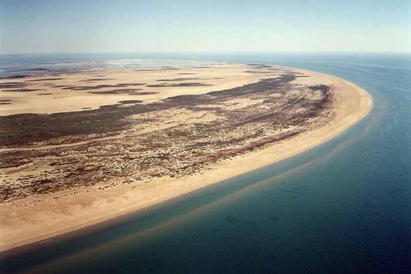 Playa El Trabucador en Sant Carles de la Ràpita