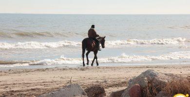 Playa Els Peixets en Alboraya