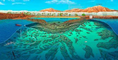 Playa Flamingo en Yaiza