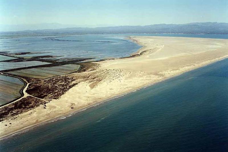 Playa La Marquesa en Deltebre