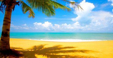 Playa La Palmera en Carreño
