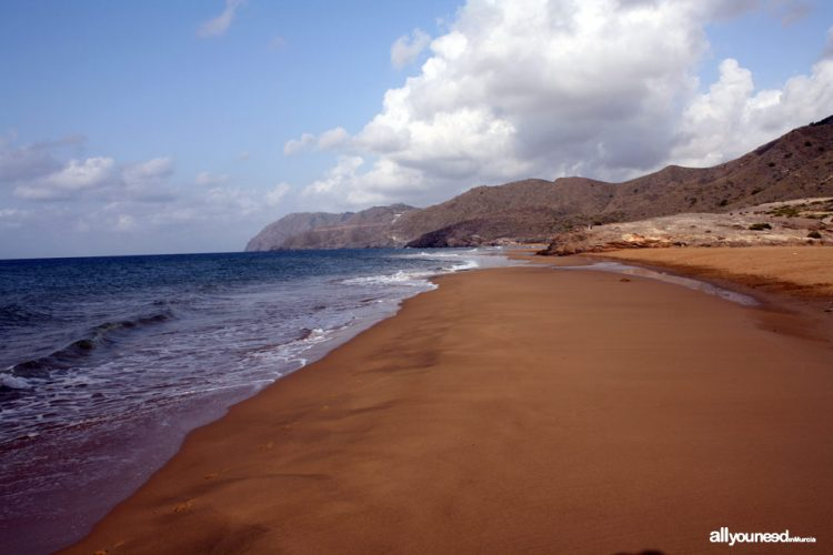 Playa Larga en La Oliva