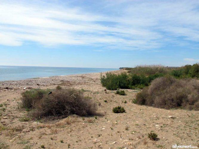 Playa Las Covaticas en Mazarrón