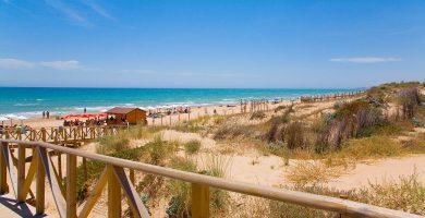 Playa Les Ortigues en Guardamar del Segura
