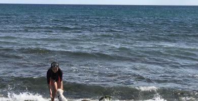Playa L'Horta de Santa María en Cambrils