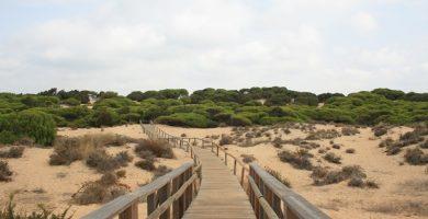 Playa Los Enebrales en Punta Umbría