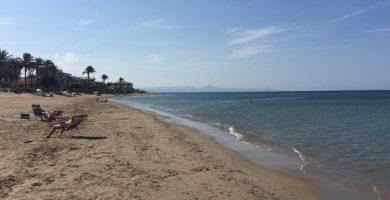 Playa Molinos y Palmeras en Dénia