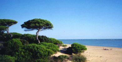 Playa Nuevo Portil en Cartaya