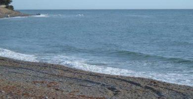 Playa Punta de la Plata en Estepona