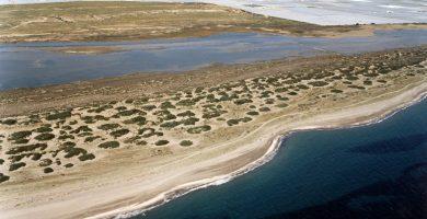 Playa Punta Entinas Sabinar en El Ejido