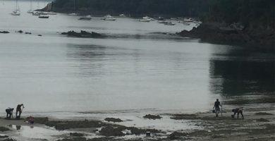 Playa Redes en Ares