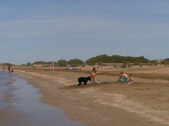 Playa Riumar en Deltebre