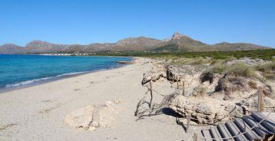 Playa Sa Cánova en Artà