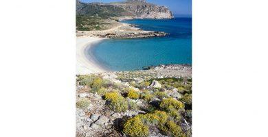 Playa Sa Font Salada en Artà