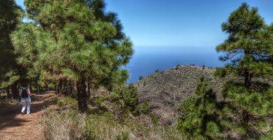 Playas de Puntagorda